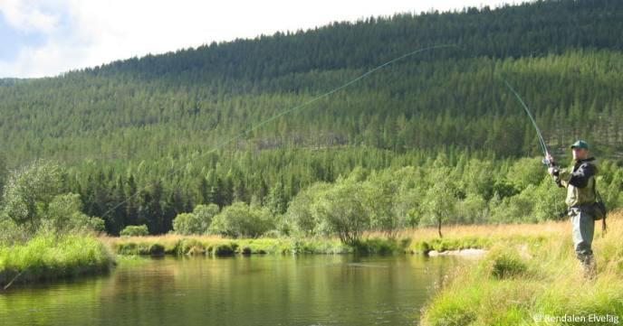 La mouche mesure plus de 12km de long certaines portions de la riviere