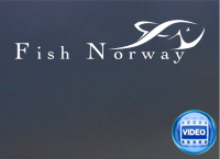 Fish Norway logo frh_edited-1