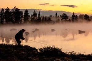 Villmarksfiske i Femundsmarka
