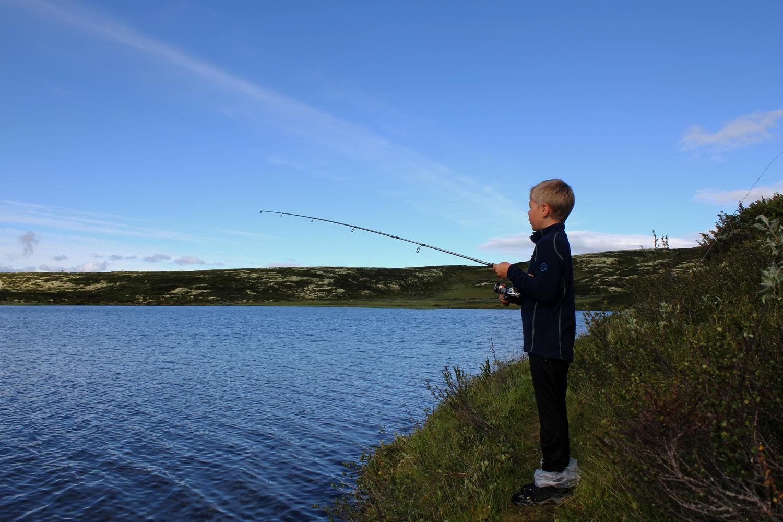 Fisker 2