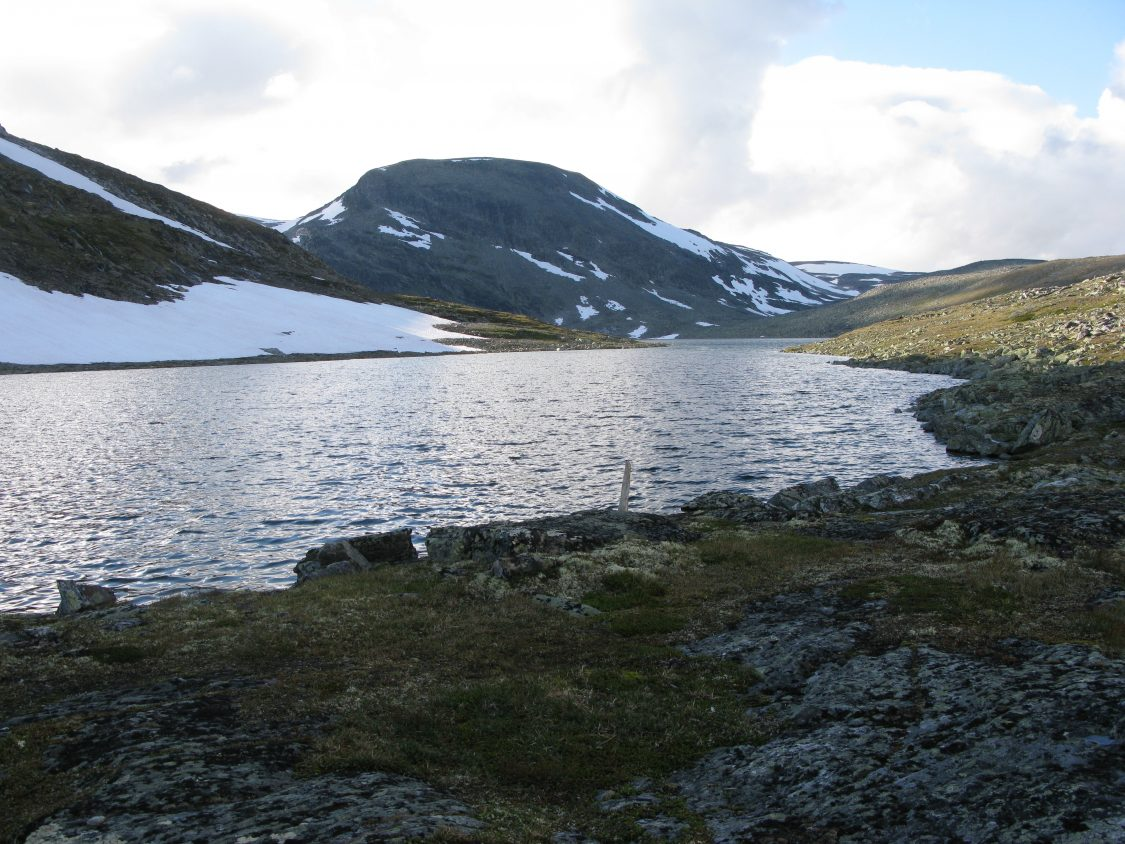Foto Lesja Fjellstyre