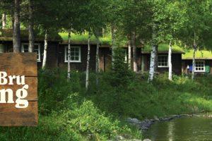 Velkommen til Gjelten Bru Camping
