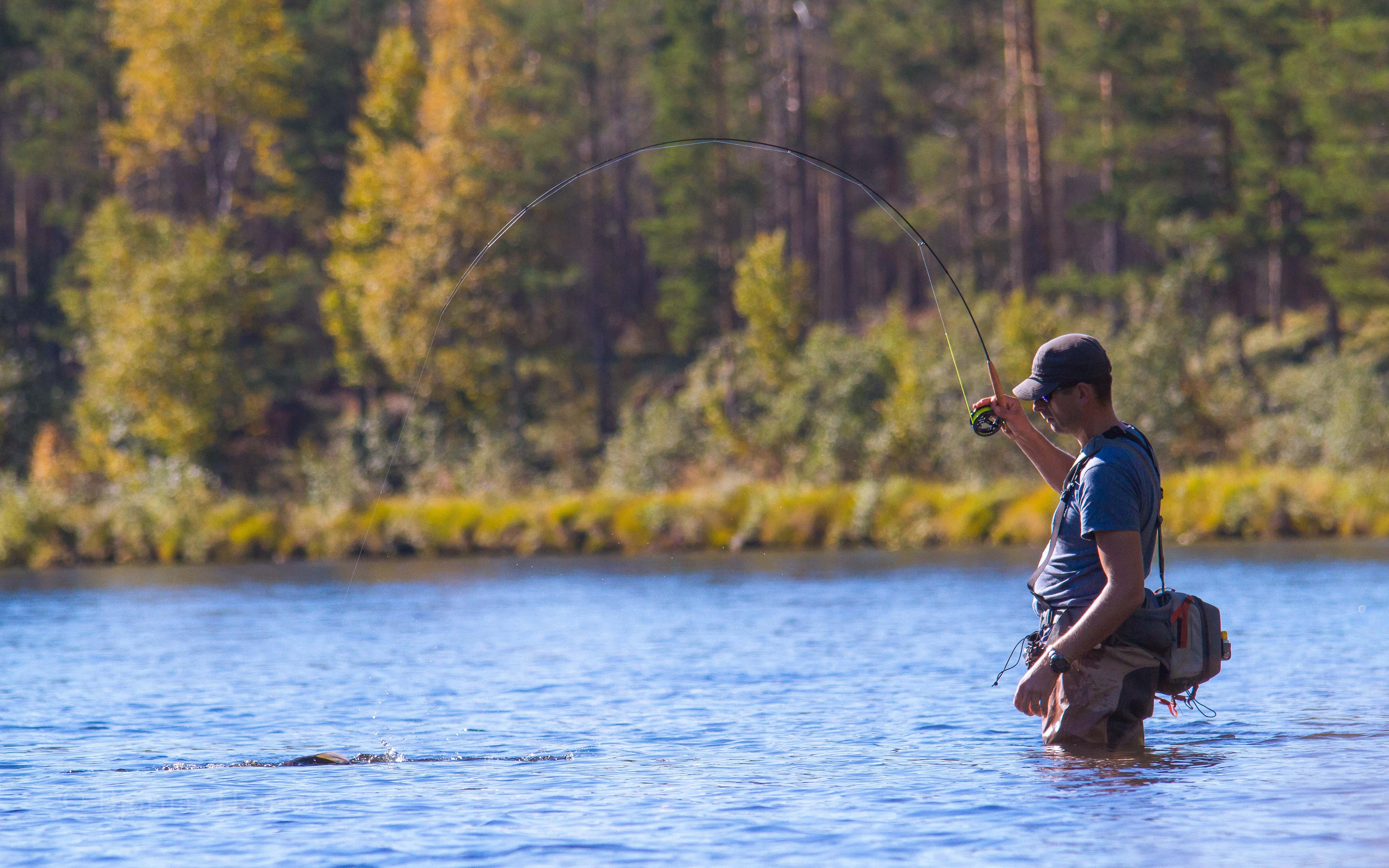 Høstfiske-Kvennan-Hedmark-Heading-Foto: Bjørnar Hansen